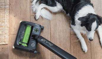 gTech AirRam Cleaning Next to Black and White Border Collie