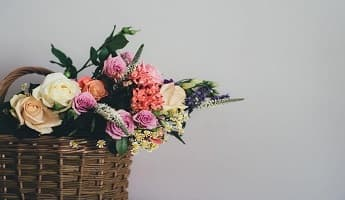 Discounted Flowers Please!