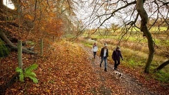 A Family Walking in a National Trust Area